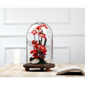 Customize High Quality Glass Display Dome