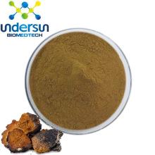 Organic Chaga Mushroom Extract Powder 15%  Polysaccharide USA Market