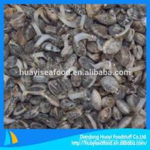 Promoção de tamanho diferente de moluscos de pescoço curto congelado com preço baixo