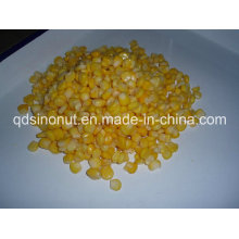 Ramadan Hot Sales Canned Sweet Corn for Gcc Countries Market (184G, 284G, 340G, 425G EOE LID)