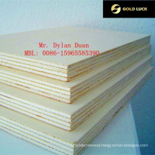 12mm Black Film Faced One Time Hot Pressed Construction Plywood