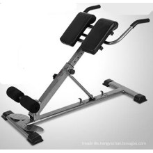 Body Fitness Exercise Equipment Roman Chair