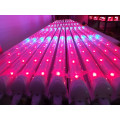 High cost performance plant factory T5 led tube light horticulture light for green house
