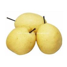 Pear Juice Powder