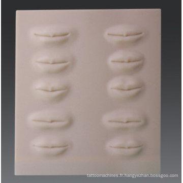 3D-stéréo tatouage pratique peau-lèvres Pratique Derme
