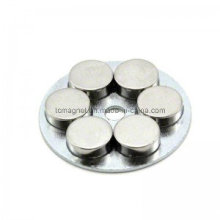 Disc Neodym Permanent Seltene Erdmagnet Montage und Kupplung im Motor verwendet