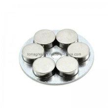 Disco de Neodimio Permanent Rare Earth Imán Asamblea y acoplamiento utilizado en el motor