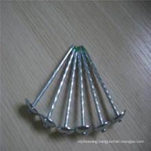 "Hot Sale Bwg9X2.5"" Twisted Shank Electro Galvanized Roofing Nails"