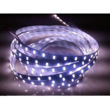 SMD5630 LED Strip Light DC12V Vit Varm Vit Färg