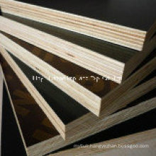 Finger Joints Wood Brown Film Poplar Core First Grade
