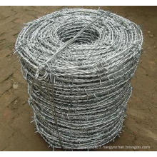 Galvanized Barbed Wire Used in Protection