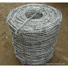 Arame farpado galvanizado usado na proteção