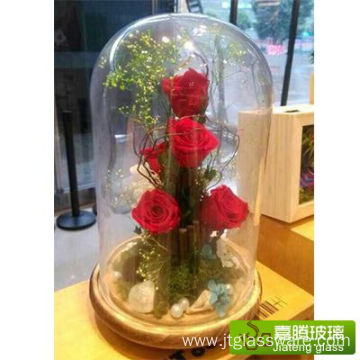Decorative Clear Glass Bell Jars/Plant Terrarium Dome