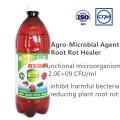 Extracto de algas líquidas de alta calidad fertilizante orgánico