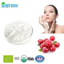 Natural and Top quality bearberry extract arbutin with competitive price