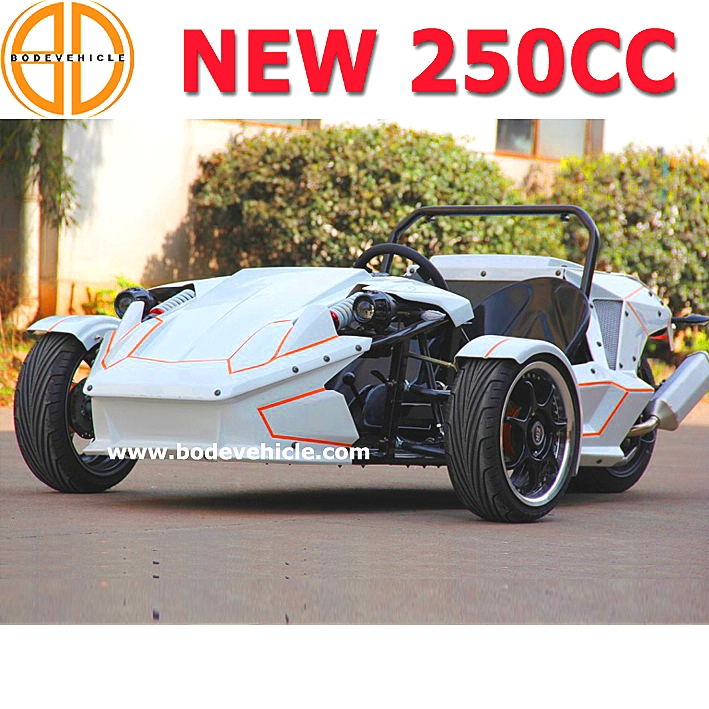 Bode Quality Assured Petrol Roadster Trike Ztr for Sale