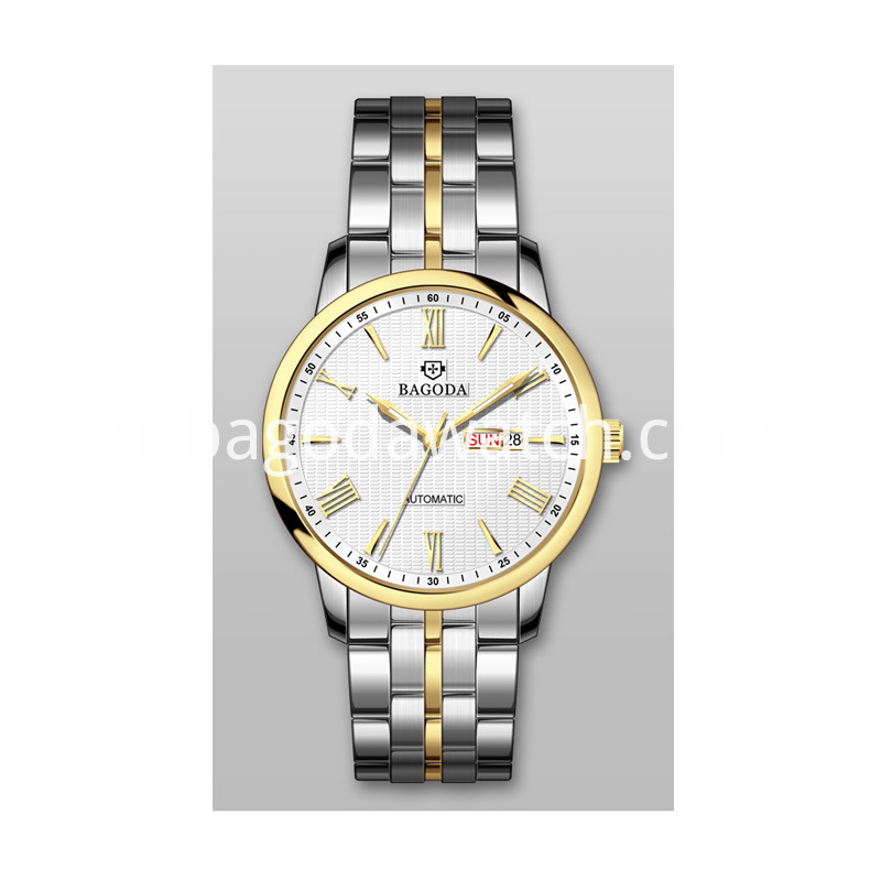 silver & gold tone watches