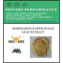 Ingrediente cosmético caliente de Slaes: Extracto de la hoja de Rosmarinus Officinalis