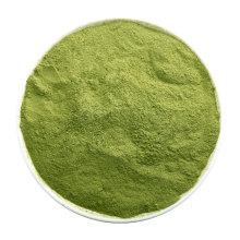 Manufacturer Supply Organic Matcha Green Tea Extract