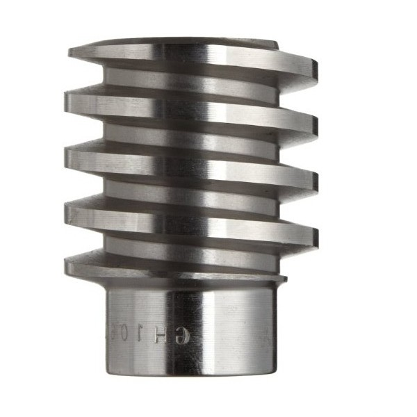 Custom Stainless Steel Worm Gear for Motorcycle
