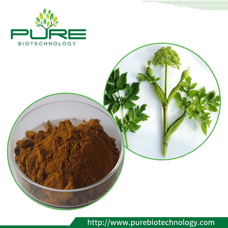 Angelica leaf extract
