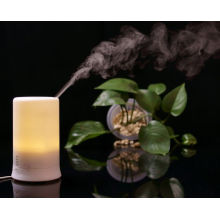 Color-changing Ultrasonic Air Humidifier And Aroma Diffuser + Lamp + Air Purifier + Air Ioniser