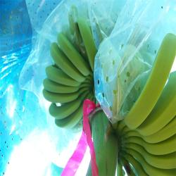 Blue Plastic Banana Protect Cover bag