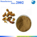 Экстракт высокого качества чистая природа семян тамаринд , тамаринд порошок семян , экстракт тамаринда