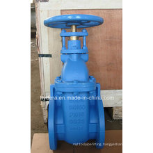 Vortex BS5163 Metal Seat Gate Valve