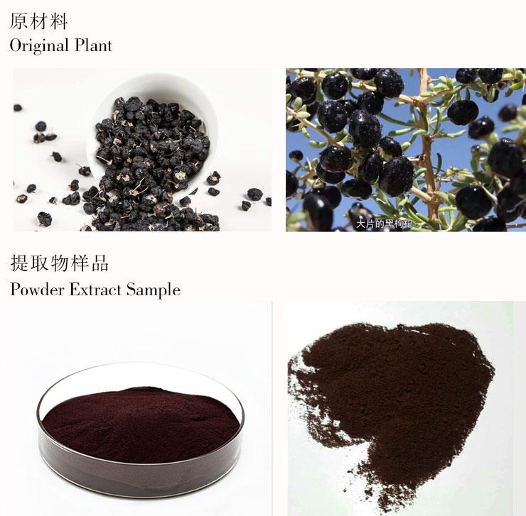 black goji berry powder-3