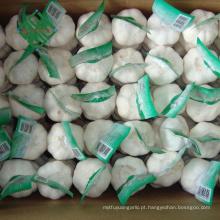 Alho branco puro fresco novo chinês superior da categoria