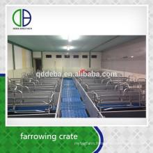 Maison de mise à niveau de qualité durable de tuyau galvanisé par usine d'or pour le porc