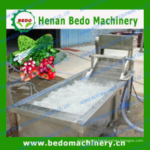 800-1000kg/h capacityozon vegetable washer for sale