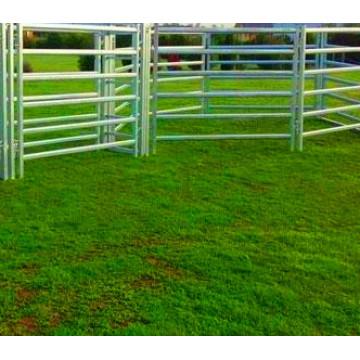 Разработан Рентабельный Рогатого Скота Лошадь Забор Панели Из Китая Фабрики