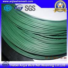 PVC beschichtetes Eisen-Draht / PVC beschichtetes Bindung Draht / PVC beschichtetes Gi-Draht