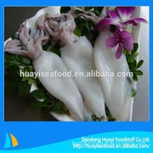 good quality frozen fresh squid hot sale in market