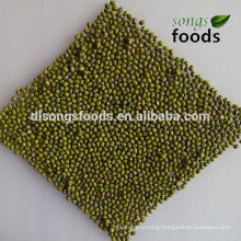 Dry bulk myanmar green mung bean