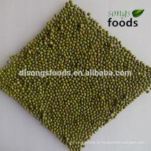 Mungo de Mung verde seco a granel seco