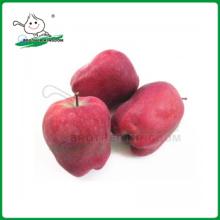 Huaniu apple / красный вкусный apple