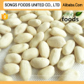 People Favourite Peanuts, Blanched Kernels Peanuts