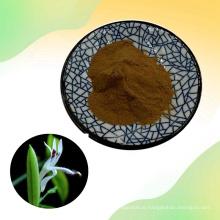Andrographis Paniculata Extract powder 98% Andrographolide