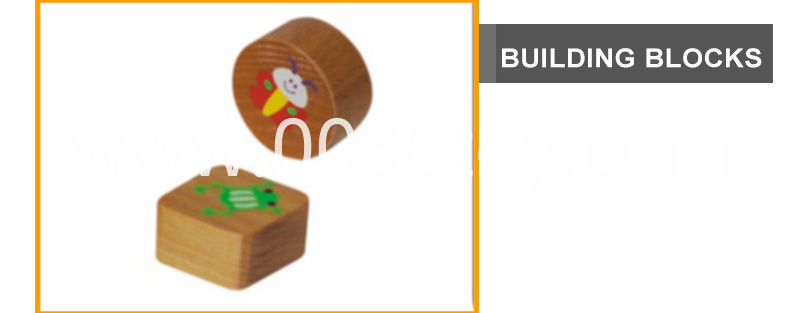 wood intelligence toys
