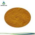 Buy online organic milk thistle extract  powder