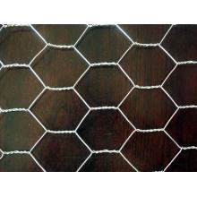 PVC Revestido Hexagonal Wire Mesh para Produção, Química, Jardim