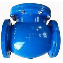 Swing flange end check valve