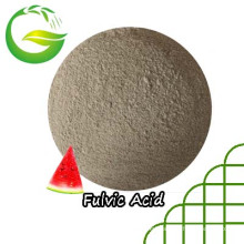 Fulvic Acid Chelated Magnesium Fertilizer for Agriculture