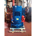 Electric motor driven vertical circulating water pump