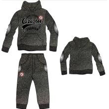 Wholesale Fleece Sweatshirt, Hoody, Hoodies (SQM-111)