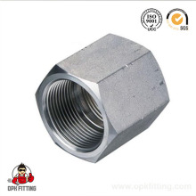 Hydraulic Female Hose Fitting and Adapter