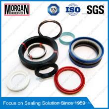 PTFE / FKM / PU / NBR / POM / PA Matériau Cylindre Hydraulique Seal
